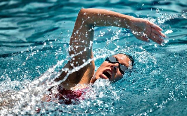 Swimcamp Training Plans
